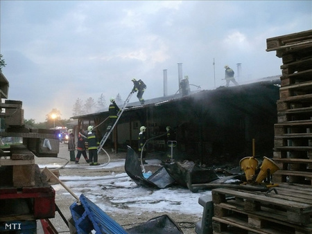 A lángokat nyíregyházi, kisvárdai, demecseri és nyírbogdányi tűzoltók fékezték meg (fotó: Taipusz Attila)