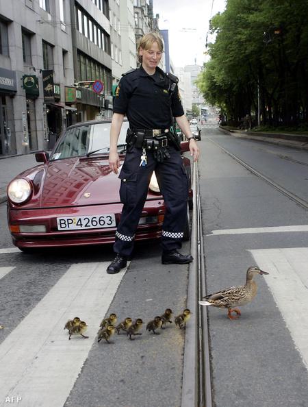 A tipikus norvég rendőr