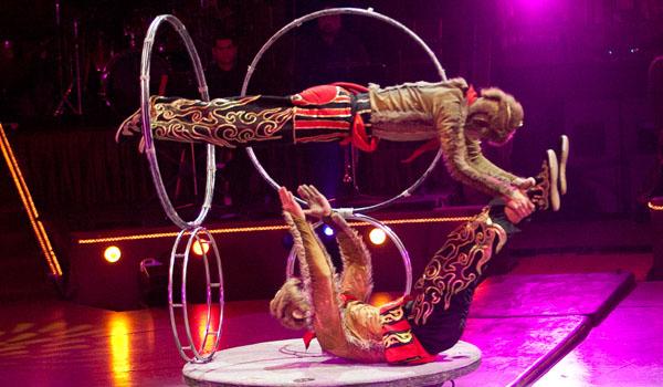 Kínai cirkusz nem csak gyerekeknek