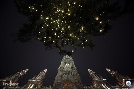 A városháza karácsonyfája.