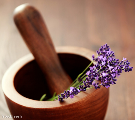 stockfresh 519324 lavender-with-mortar-and-pestle sizeM