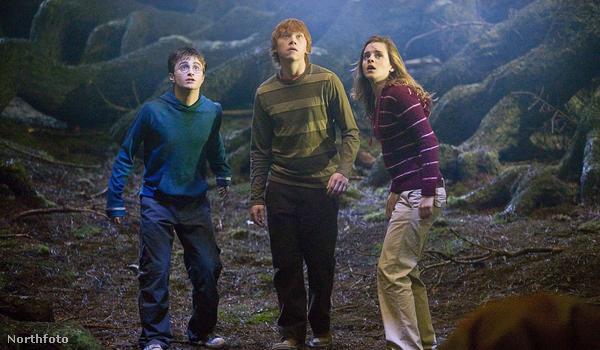 Harry Potter barátaival, Ronnal és Hermionéval