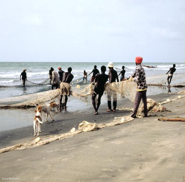 Halászok Gambiában