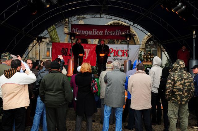 mangalica fesztivá