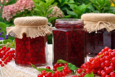 stockfresh 1286552 jars-of-homemade-red-currant-jam-with-fresh-f