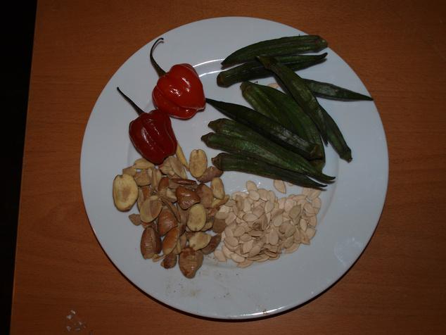 Ogbono, egusi, afrikai chili, okra