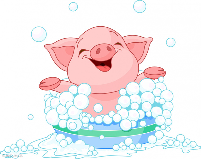 stockfresh 1037287 piglet-taking-a-bath sizeM