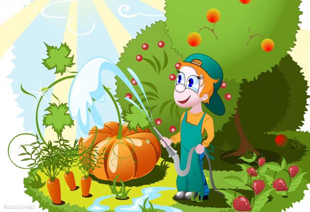 stockfresh 919967 gardener sizeM