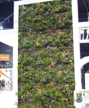 Ez a növényfal érdekes megoldás lehet egy csúnya falfelület eltűntetésére