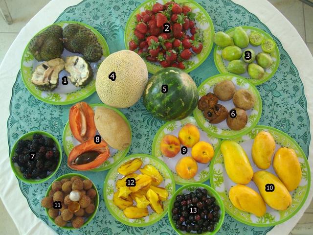 1.guanabana, 2.eper, 3.kaktuszfüge, 4.sárgadinnye, 5.görögdinnye, 6.zapote, 7.szeder, 8.mamey, 9.őszibarack, 10.mangó, 11.licsi, 12.karambola, 13.capulín.