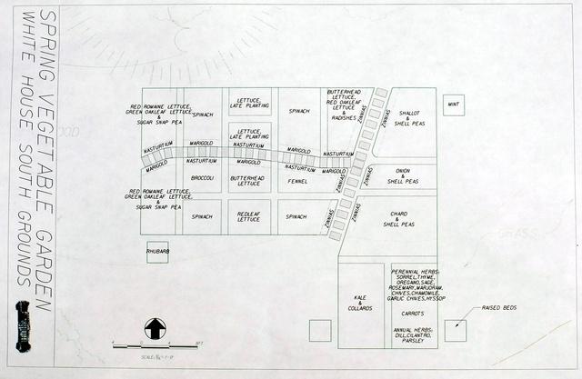 Így néz ki a Fehér Ház zöldségeskertje