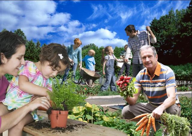 Zöldségek és gyümölcsök az innováció és tanulás részlegben.