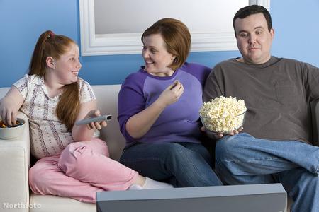 fatfamily