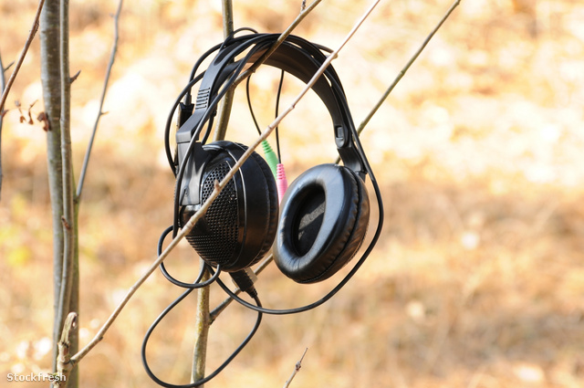 stockfresh 1328970 headphones sizeM
