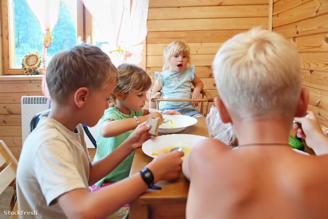 stockfresh 645479 children-having-dinner-behind-table sizeM