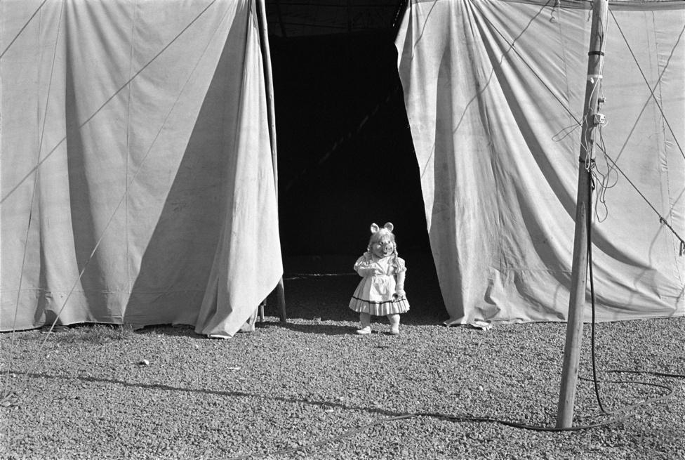 Miss Röfi A 'Cirkus' sorozatból 1984-1988. Paz Errázuriz © Paz Errázuriz. VEGAP. Madrid, 2012