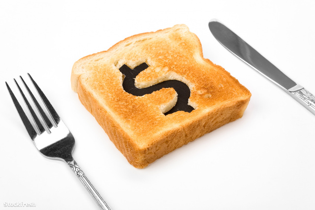 stockfresh 396466 bread-slice-with-dollar-sign sizeM