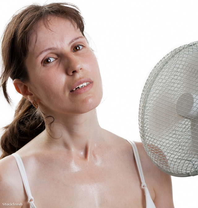 stockfresh 297560 women-with-fan sizeM