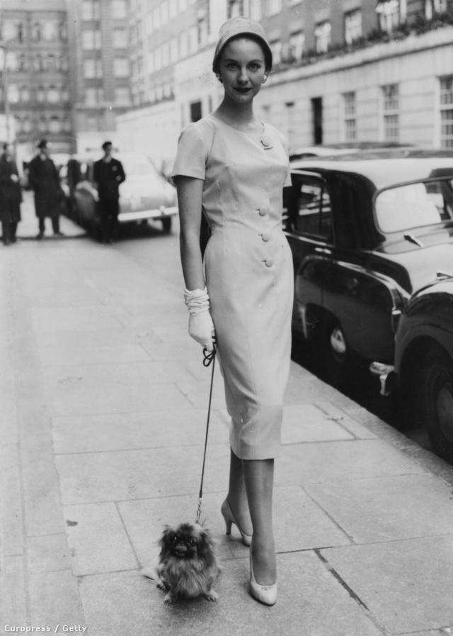 Shirley Worthington  modell E R Hill of London tavaszi kollekciójában, 1955-ben. A hölgy flanel nappali ruhát visel, melynek dísze mindössze négy gomb. Hozzá pincsi is kesztyű dukál.