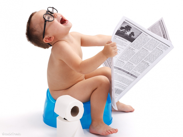 stockfresh 1598366 little-boy-sitting-on-potty-with-newspaper si