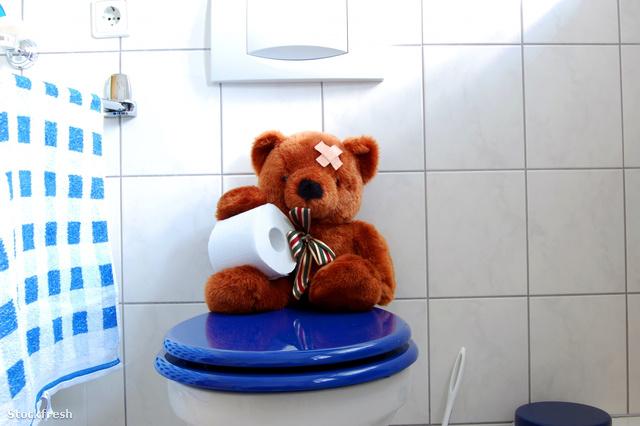 stockfresh 1494232 toy-teddy-bear-on-wc-toilet sizeM