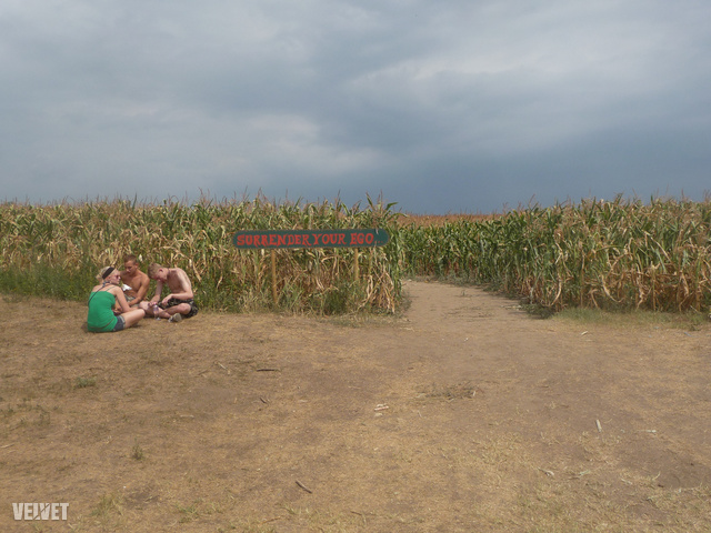 A kukoricásban levő labirintus bejárata