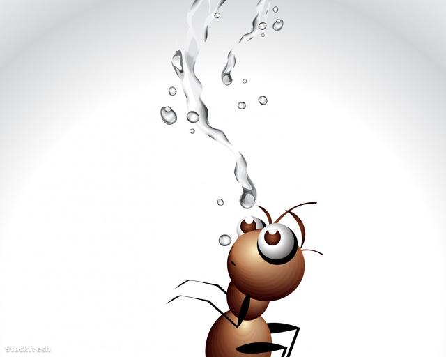 stockfresh 348796 ant-character sizeM