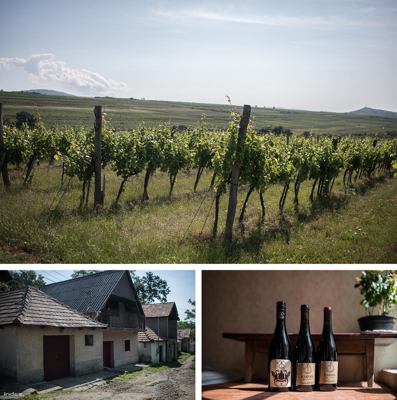 Fent a Karner Pincészet szőlői, a bal alsó kép bal szélén a családi pince, illetve jobbra a borászat háromféle bora: balra a Karner Absence nevű bor, jobbra pedig két vörösbor, egyik a Vitézföldről, másik a Tavaszföldről.