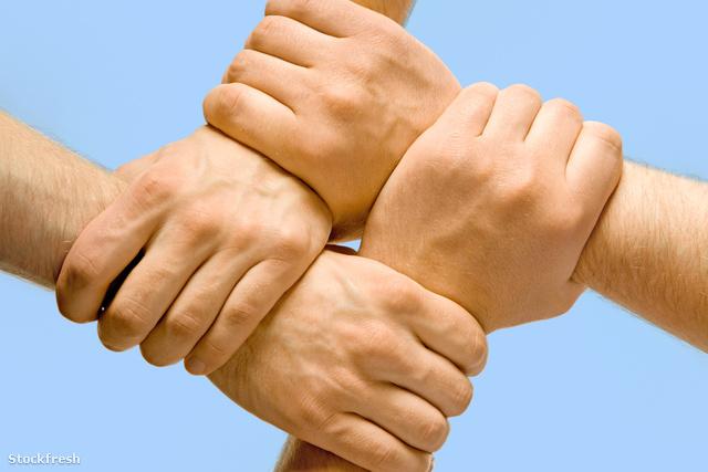 stockfresh 443462 partnership sizeM