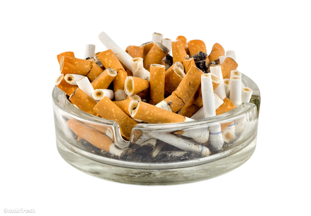 stockfresh 147388 cigarettes-in-an-ashtray sizeM