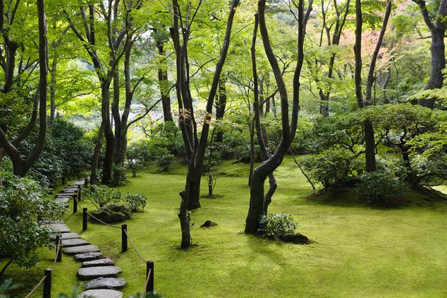 Okochi Denjiro kert Kyotóban