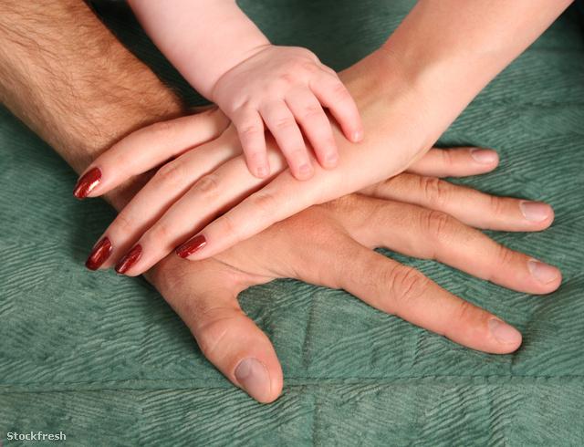stockfresh 647231 family-hands sizeM