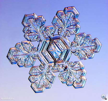 bm snowflake efg025 29