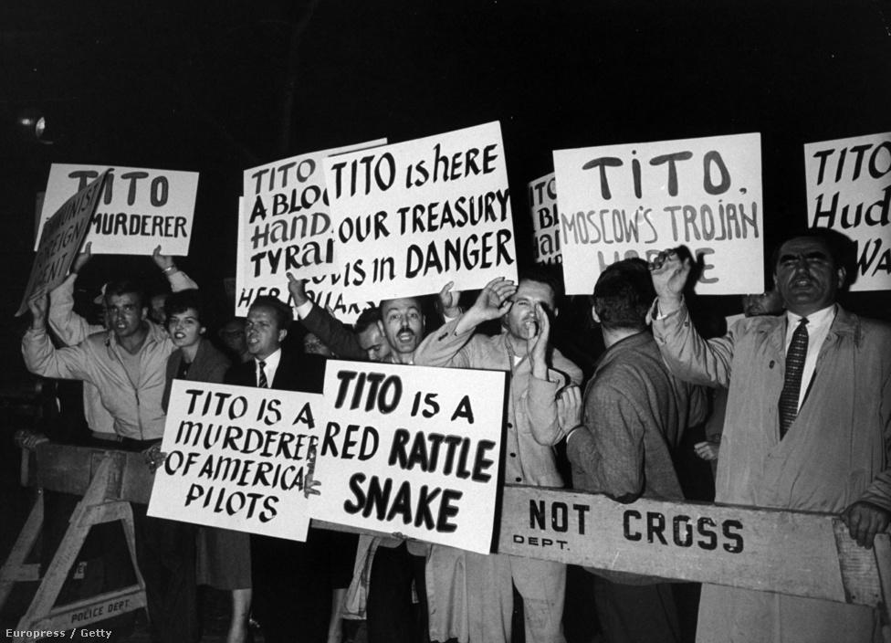 """Titót 1960-as amerikai látogatásán ellentüntetők fogadták. A táblákon többek között az olvasható, hogy: """"Tito Moszkva trójai lova"""", """"Tito itt van, veszélyben az államkincstárunk"""", """"Tito egy vörös csörgőkígyó"""", """"Tito amerikai pilóták gyilkosa""""."""