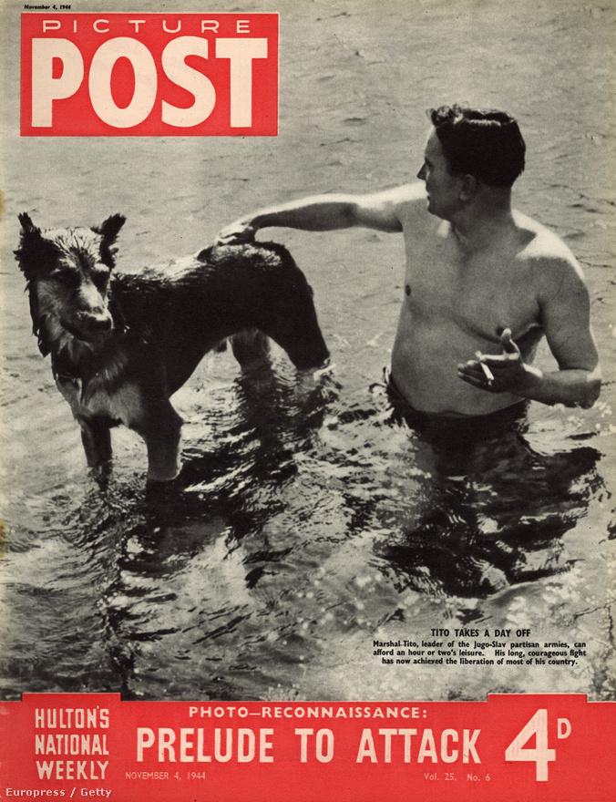 """""""Előjáték a támadáshoz"""" – Tito, a Jugoszláv Népfelszabadító Antifasiszta Tanács vezetője a németekkel vívott harc szünetében a kutyájával fürdik 1944-ben. Ekkor a németek egyre fokozódó csapásai elől Tito elmenekült, de a Szovjet Hadsereg segítségével 1945-ben győztesen került ki a háborúból."""