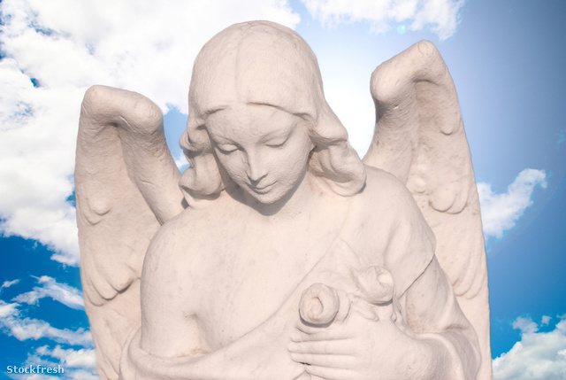 stockfresh 2389175 angel sizeM