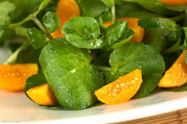 stockfresh 1972206 watercress-and-physalis-salad sizeM