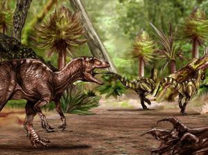 Tollas volt a T-rex háta