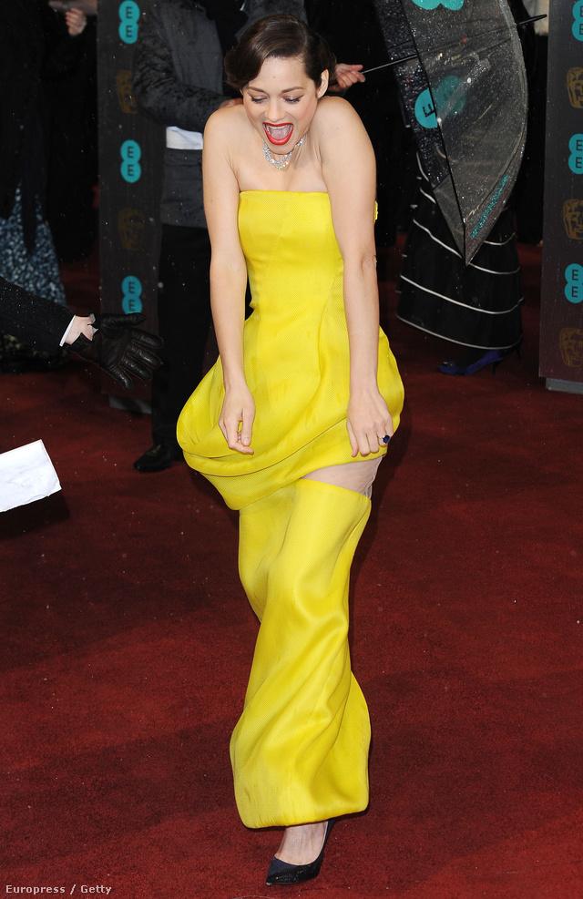 2013 február 10-én pedig a British Academy Film Awards így vonult Marion Cotillard, egy Dior ruhában
