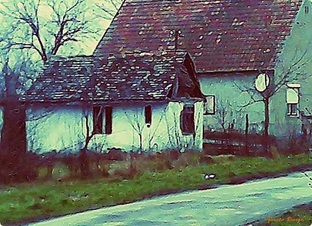 """Tipikus régi fajta """"putri"""" és nagy családi ház egymás mellett a faluban. Mindkettőben laknak. Ködös időben a kis Huawei telefonom nem egy fényképezőzseni"""