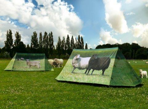 Állat és környezetbarát sátorozóknak is van miből választani