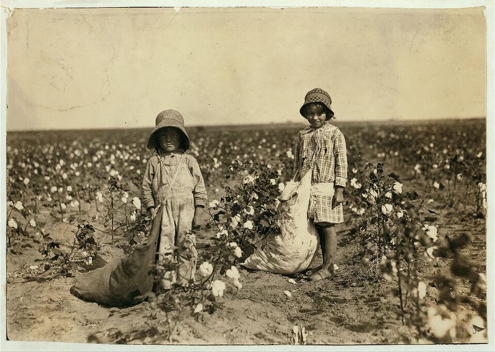 """Ezen az 1908-ban készült képen a 6 illetve 5 éves Jewel és Harold Walker látható, akik 9-11 kiló gyapotot szedtek egy nap egy oklahomai gyapotföldön.  """"Azt ígértem nekik, hogy kaphatnak játkvonatot, ha jól végzik a munkájukat, ezért most már nagyon rövid idő alatt teleszedik a zsákot"""" – mondta a fotósnak az apjuk. Lewis W. Hine tulajdonképpen az NCLC legnagyobb fegyvere volt a gyermekmunka elleni küzdelemben , mert nem csak arra ügyelt, hogy pontosan dokumentálja a gyerekmunkások életkörülményeit, de arra is, hogy olyan képeket alkosson, amelyek meghatják az embereket és felháborodást váltanak ki. Amikor a munkájáról kérdezték, Hine általában csak annyit mondott, hogy olyan dolgokat mutat meg a képeivel, amelyeken változtatni kellene."""