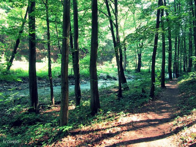 Mi a patakparti ösvényt választottuk