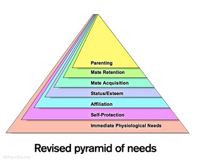 maslow pyramid needs