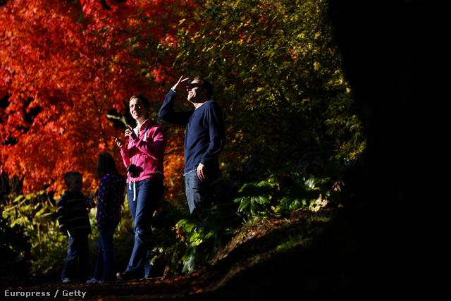 Pihenő turisták egy angliai arborétumban