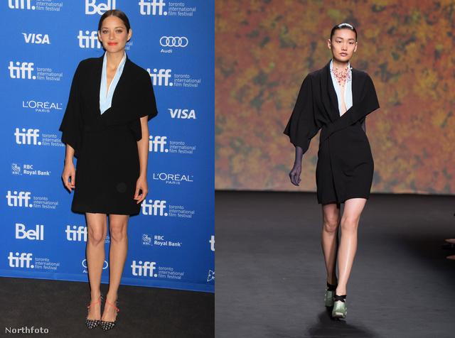 Marion Cotillard egy Christian Dior-ruhát választott.