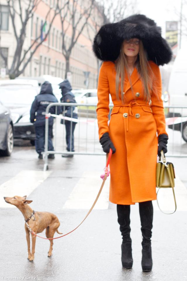 Dello Russo átlagosan 10.888 millió forint értékű ruhákban sétáltatja kutyáját.