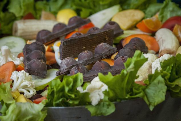 Csokoládészeletek takarmányfélékkel vegyítve a Debreceni Állat- és Növénykert gibbonházában 2013. november 18-án.