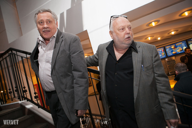 Koltai Róbert, Andy Vajna