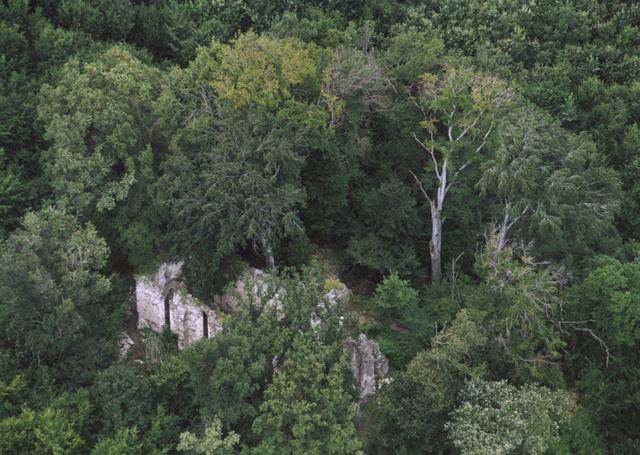 A gönci pálos kolostor romjai a Zempléni-hegységben